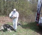 Beseitigung von Umweltdelikten- hier Asbestentsorgung