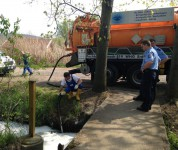 Beseitigung von Umweltdelikten - hier Reinigung eines Bachlaufes